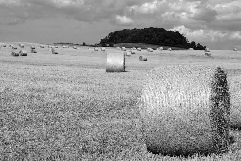 Cornerstone Opportunity: Zemědělská půda